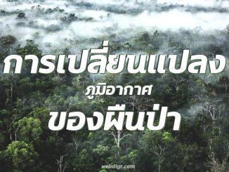 1 8 1 326x245 - การเปลี่ยนแปลงภูมิอากาศ ของพื้นป่า